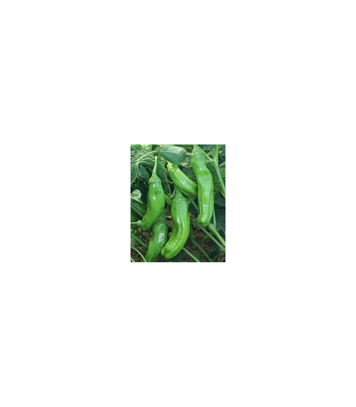 Chilli - Zlaté řecké feferonky - semena - 7 ks- Chilli