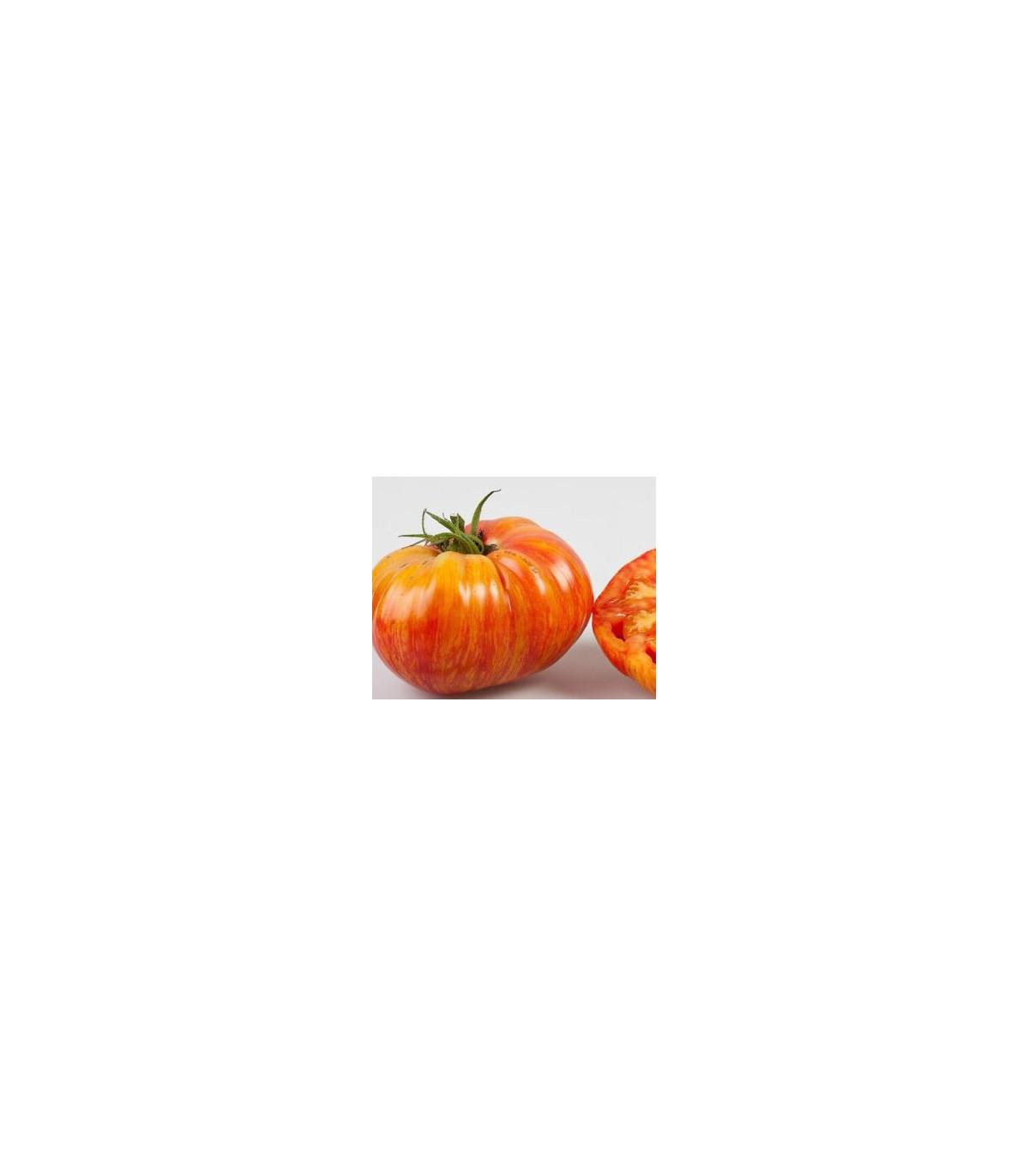 Paradajka kolíková hybridná Virginia F1 - semená paradajky - 5 ks