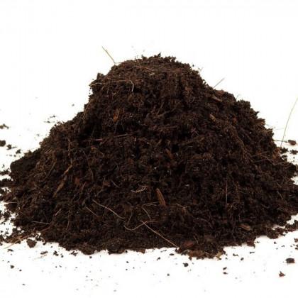 Špeciálny substrát pre mäsožravé rastliny pestované zo semien - 50 gr