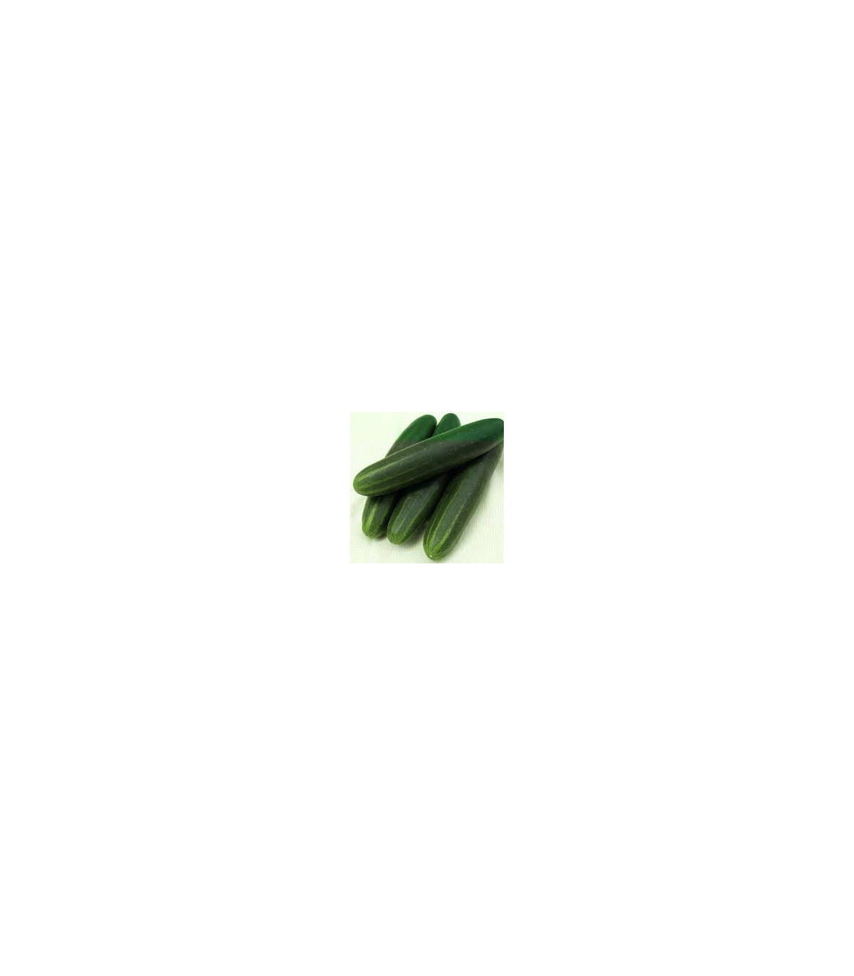 Uhorka Palladium F1 - BIO kvalita - uhorka siatá šalátová - semená uhorky - 4 ks