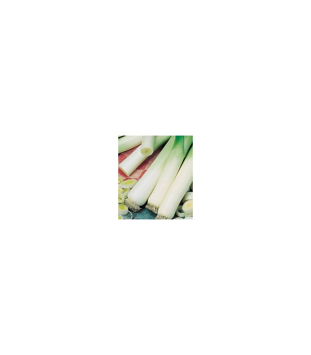 Pór Roxton F1 - predaj BIO semien póru - 10 ks
