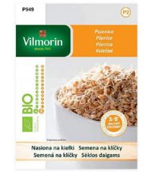 Bio semená na klíčky - Pšenica - 40 g