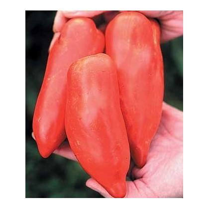 Rajče - Howard - semena - 7 ks