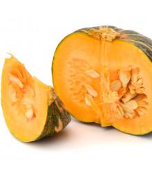 BIO tekvica Zelené Hokkaido - Cucurbita maxima - dyňa - predaj bio semien - 7 ks