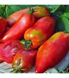 Kolíková paradajka Adenhorn - Lycopersicon esculentum - rajčiak - predaj semien - 10 ks