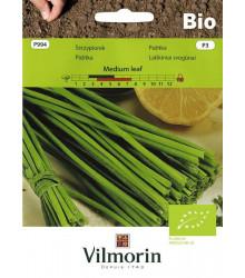 BIO Pažítka Medium Leaf - Allium schoenoprasum L.- predaj bio semien - 1 g