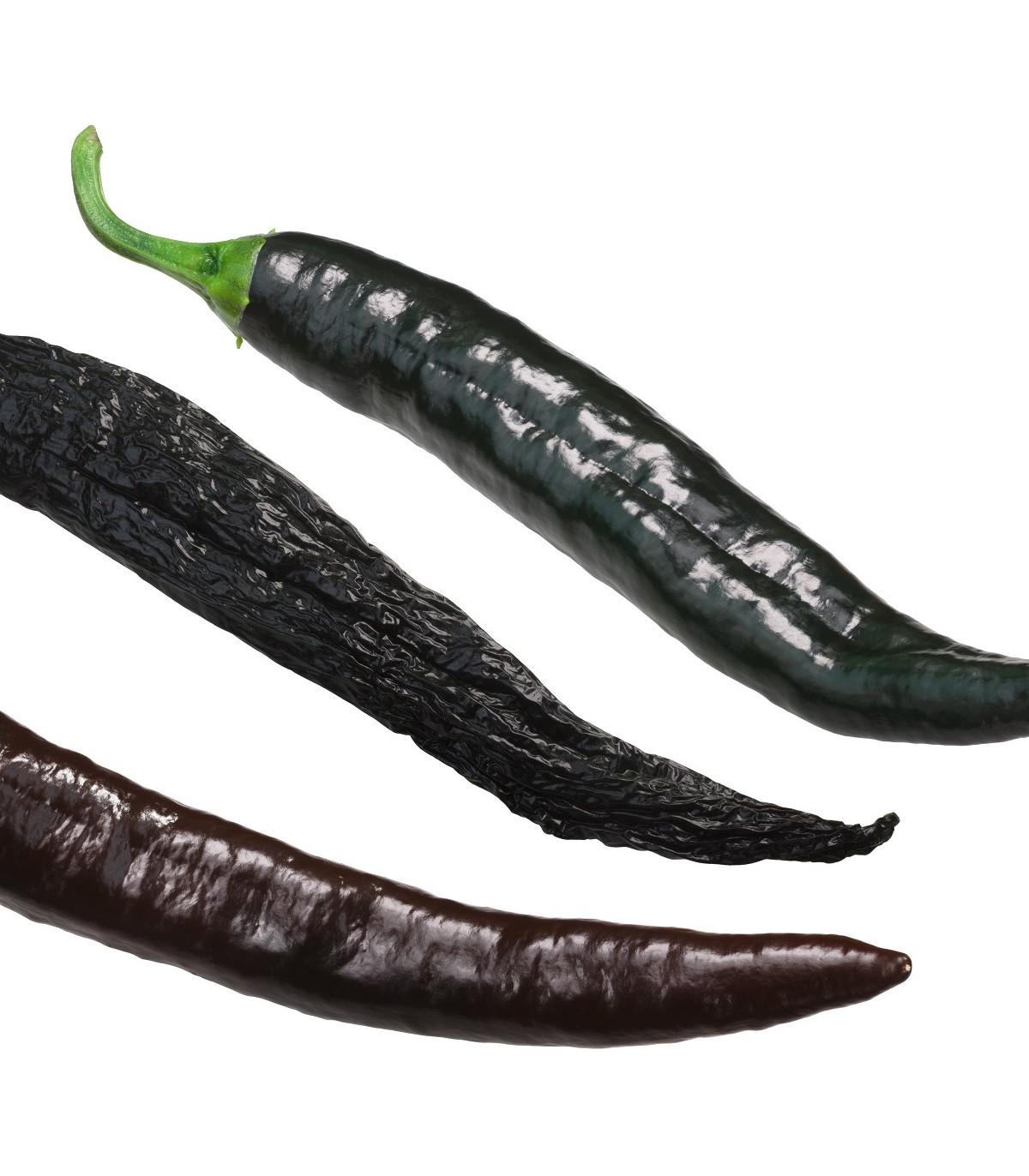 Chilli Pasilla Bajio - Capsicum annuum - semená - 7 ks