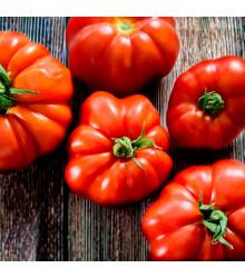 BIO paradajka Marmande - Lycopersicon lycopersicum - rajčiak - predaj bio semien rajčiaka - 15 ks