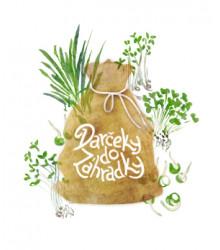 Balíček pre milovníkov zdravej stravy - darčekové balenie zadarmo - predaj BIO semien