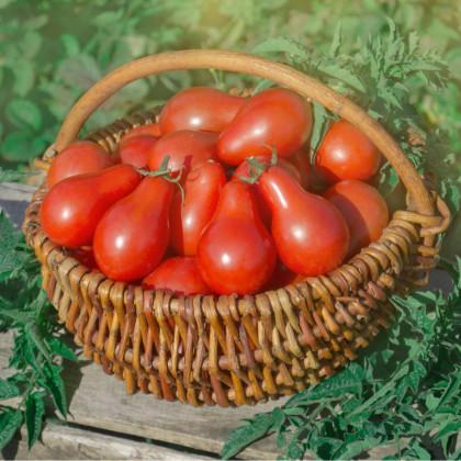 Rajče Červená hruška - semena rajčat - 7 ks
