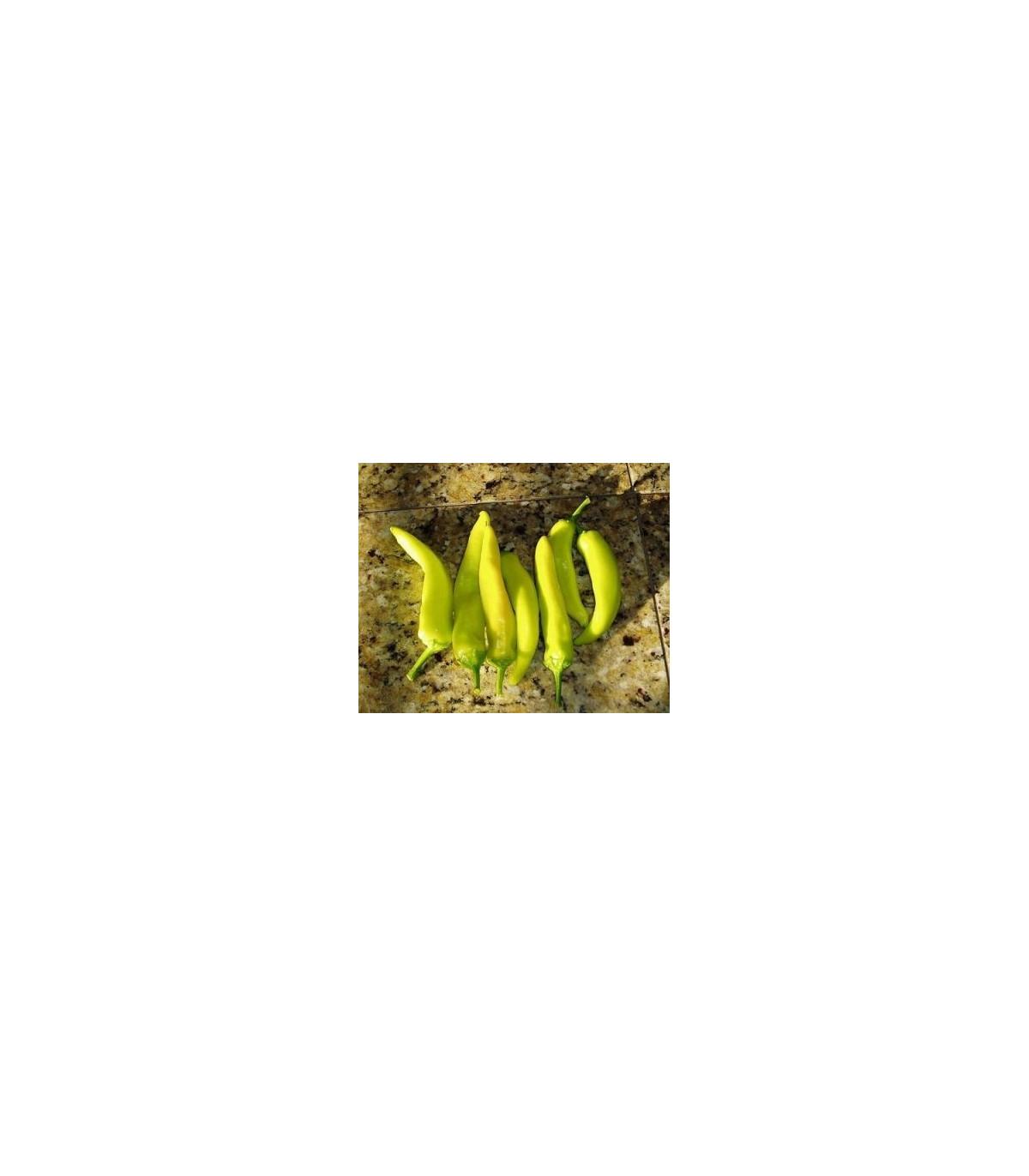 Chilli maďarský vosk - semena Chilli papriček - rostlina Capsicum annuum - 6 ks
