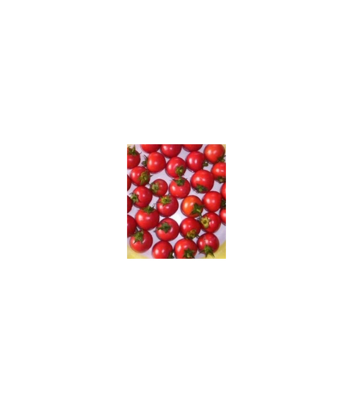 Rajče koktejlové Bistro - semena Rajčat - 15 ks