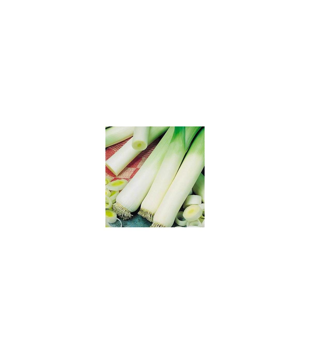 Pór - pórek zimní Natan - semena Pórku - Allium porrum - 1,5 gr